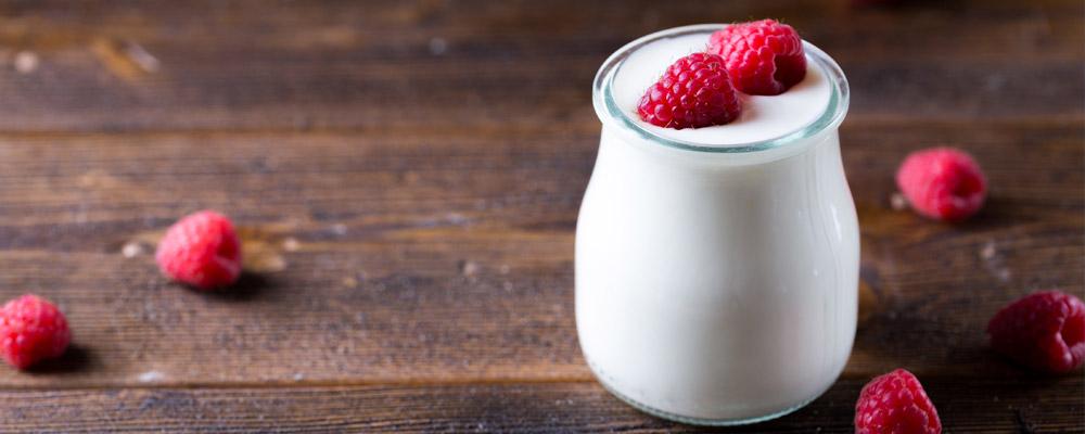 Tout savoir sur le yaourt